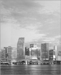 Downtown Miami - Lauren Sencion